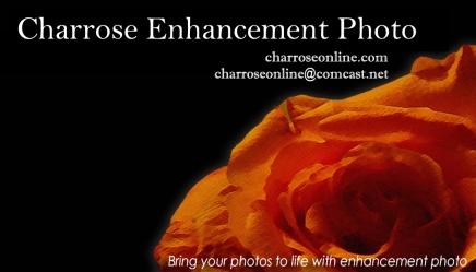 charroseenhancementphoto